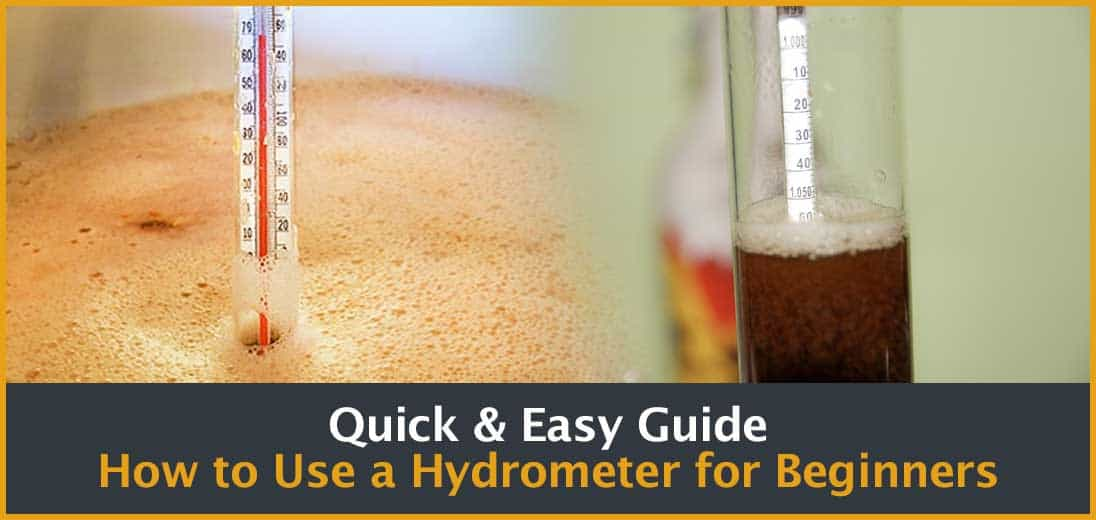 Quick & Easy Guide How to Use a Hydrometer for Beginners