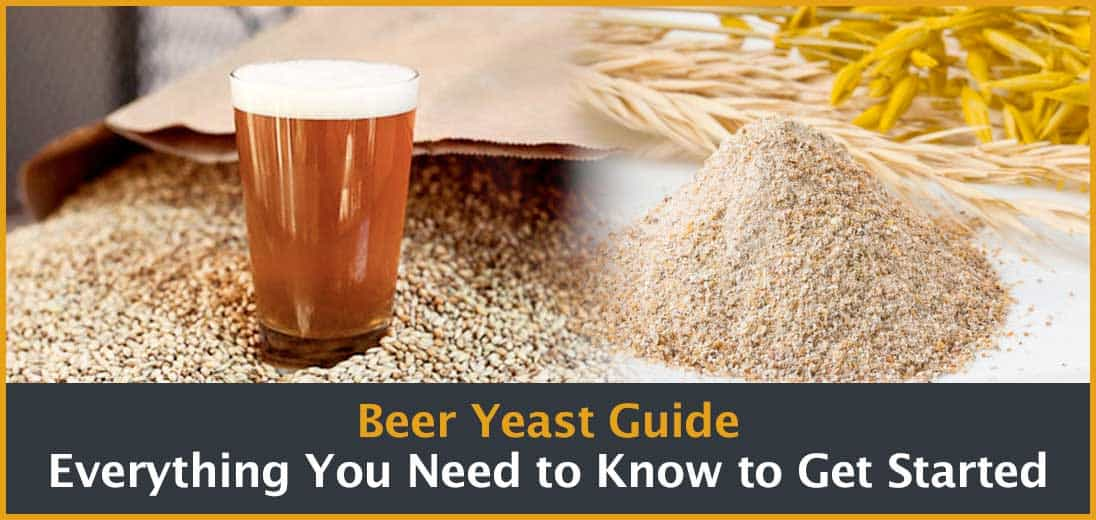 Beer Yeast Guide