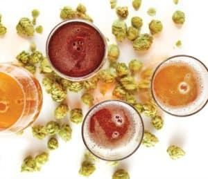 top view of beers with hops