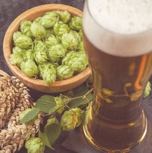 ale with hops in a bowl