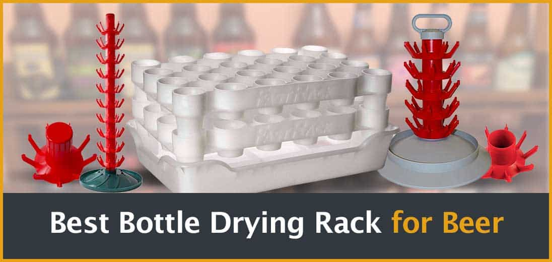 Top 3 Bottle Drying Racks | Best Drainers for Your Homebrew