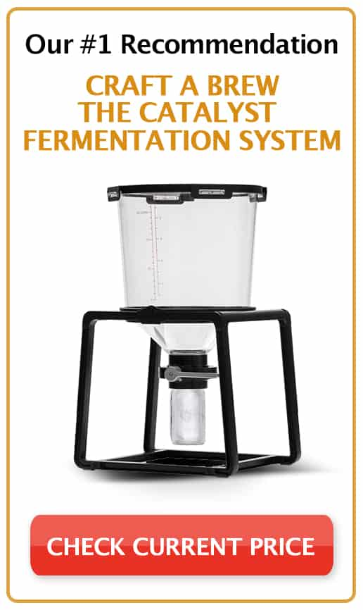 6 Best Conical Fermenters For Homebrew 2018 Review Updated