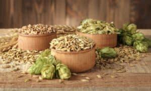 Hop recipe ingredients