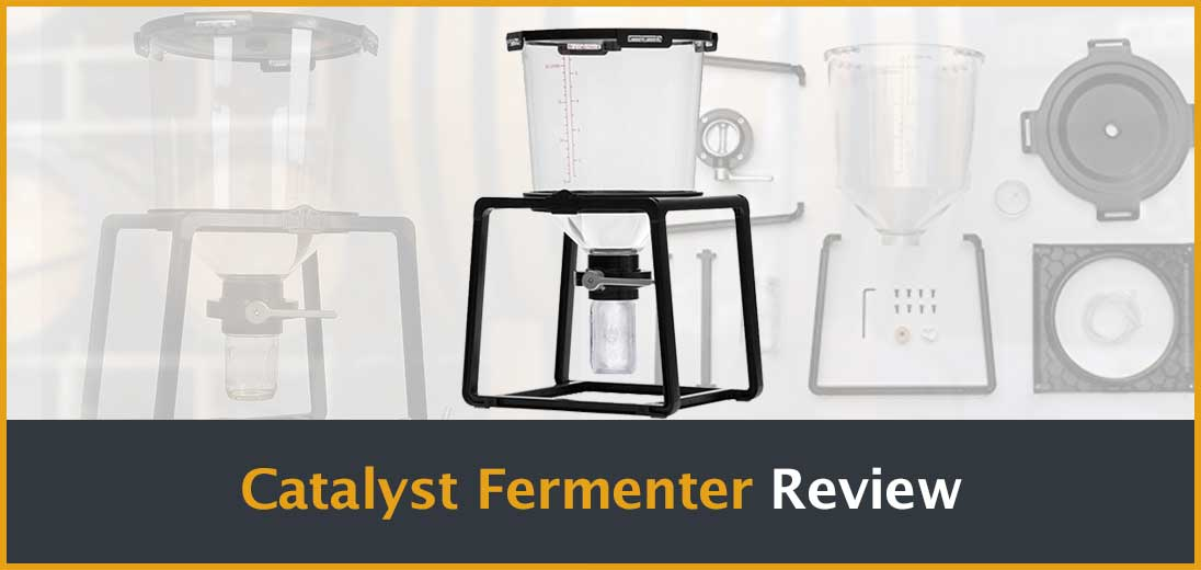 Catalyst Fermenter Review