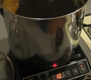 beer brewing using induction