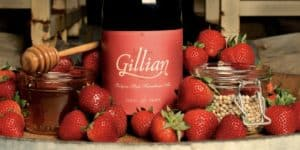 Goose Island Gillian sour beer