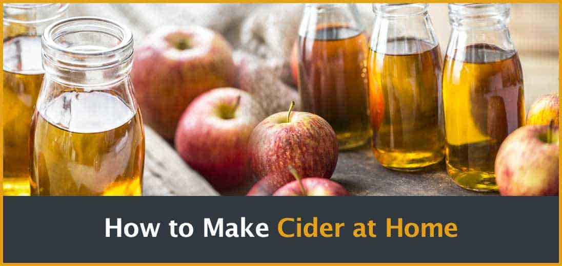 How to make Cider at home Cover Image
