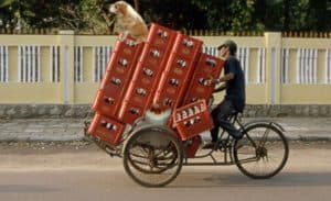 beer delivery door to door