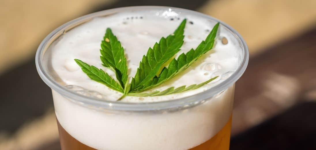 What are the Effects of CBD Beer?
