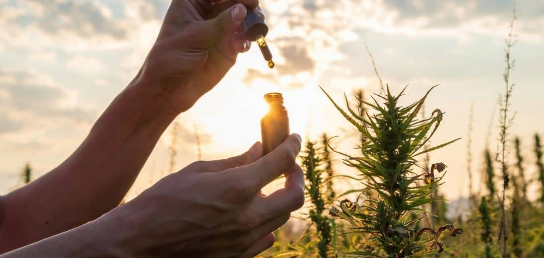 What is CBD? - Effects of CBD Beer