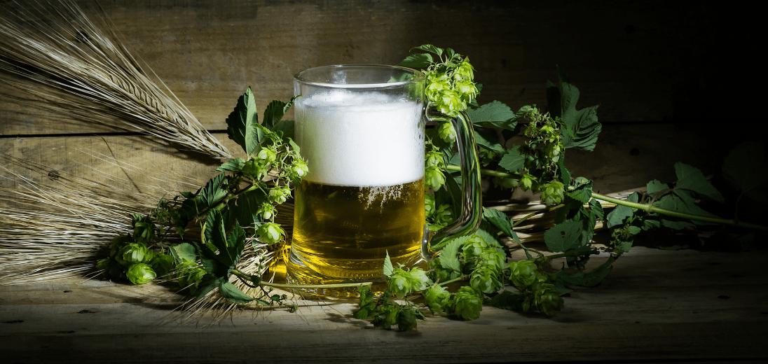 Why is Beer Not Vegan?